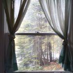 BH_window5